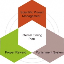Internal timing plan